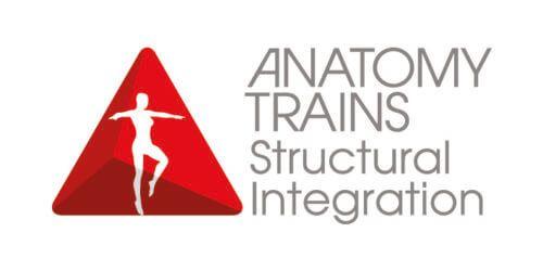 łańcuchy mieśniowe anatomy trains warszawa