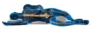 ból ostry kręgosłupa